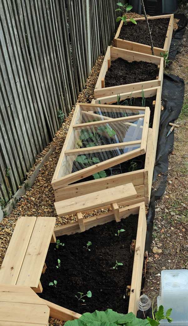 Beds-half-planted